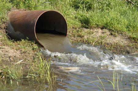 Выявлены виновные в загрязнении реки Цны в Сампурском районе