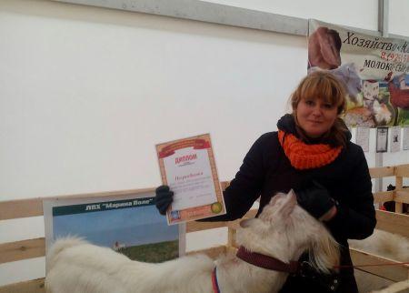 На Покровской ярмарке прошла выставка коз