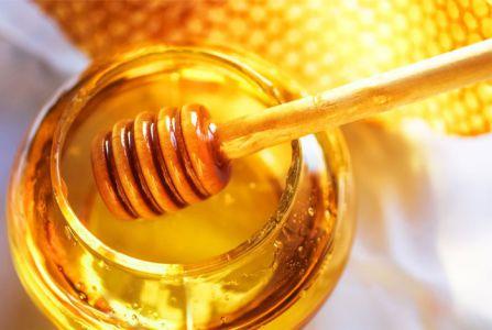 "Тамбовский ""медведь"" своровал у пчеловода 22 килограмма меда"