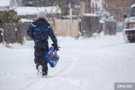 Тамбовским школьникам не рекомендуют идти учиться в мороз
