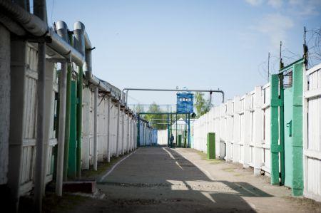 Тамбовчанину дали 9 лет и 10 дней строгого режима за убийство приятеля