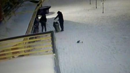 Полиция разыскивает тамбовчан, повредивших плафоны в городском парке