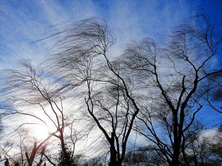 МЧС предупреждает тамбовчан о неблагоприятных погодных условиях