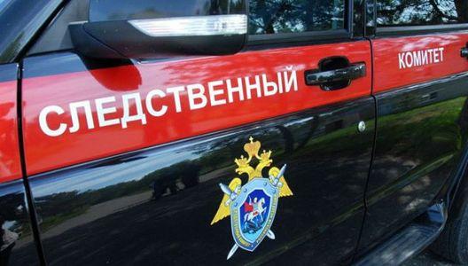 В Тамбовской области внук забил престарелого деда молотком