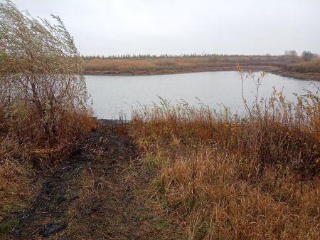 В Жердевском районе в пруду найдены останки ещё одного человека